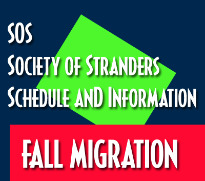 SOS Fall Migration 2020