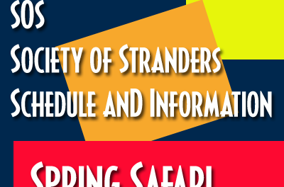 SOS – Spring Safari