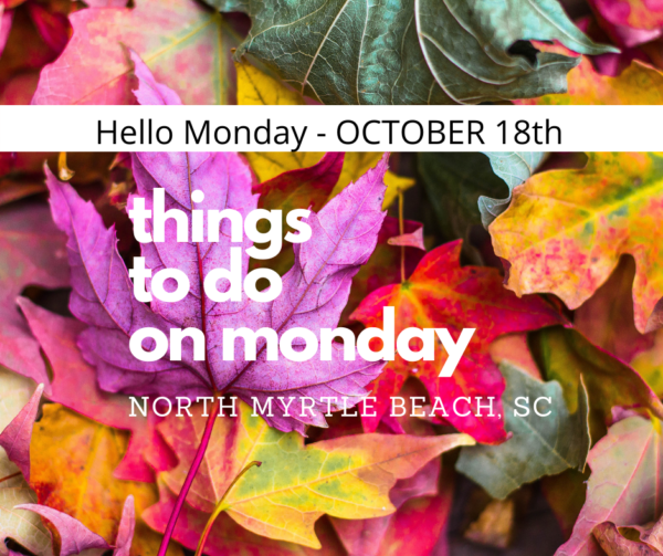 monday in NMB